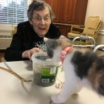 Marion catches Luna sneaking into the open jar of catnip!