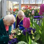 Shirley and Audrey examining the flowers