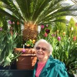 Shirley loved this tropical-looking tree!